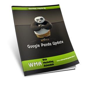 Google Panda Update - Ebook gratis