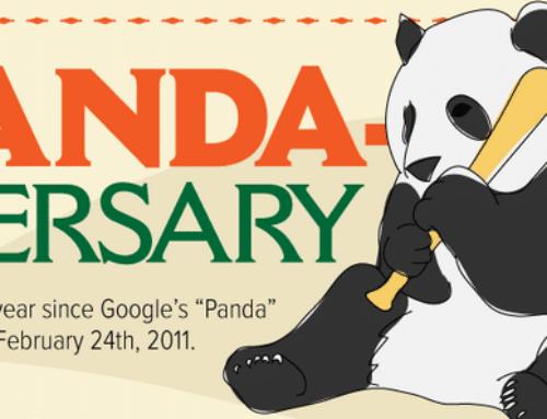 Primo anniversario di Google Panda [Infografica]